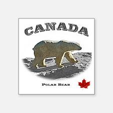 "Canada-PolarBear2-1 copy Square Sticker 3"" x 3"""