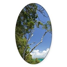 Noosa. Noosa National Park view of  Decal