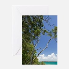 Noosa. Noosa National Park view of L Greeting Card