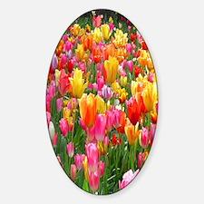 Colorful Tulip Flip Flops Decal