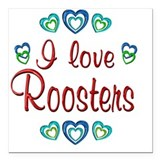 Rooster Square Car Magnets