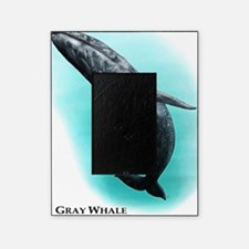 Gray Whale Picture Frame