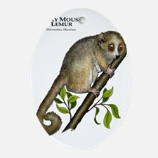 Gray Mouse Lemur Oval Ornament