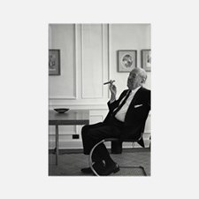 Mies van der Rohe in chair Rectangle Magnet