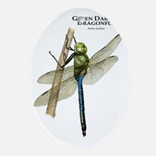 Green Darner Dragonfly Oval Ornament