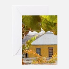 Domain Road Vineyard Greeting Card