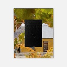 Domain Road Vineyard Picture Frame