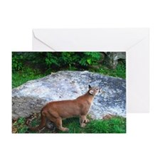 cougmouse2 Greeting Card