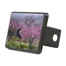 dressage horse 12x20 Hitch Cover