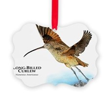 Long-Billed Curlew Ornament