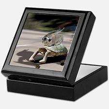 rabbit tortoise mousemat Keepsake Box