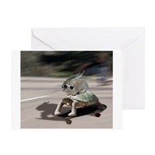 rabbit tortoise mousemat Greeting Card