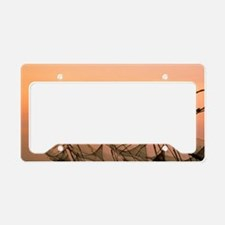 Asia, India, Kerala. Chinese  License Plate Holder