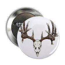 "Skull hunter whitetail  buck 2.25"" Button"