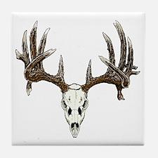 Skull hunter whitetail  buck Tile Coaster