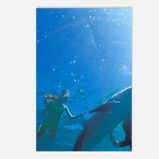 Caribbean Sea Postcards (Package of 8)