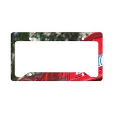 Style Telephone Booths. Georg License Plate Holder