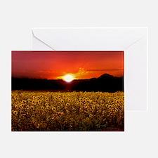 sunflowersunsetframe Greeting Card
