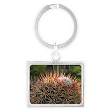 Turk's Cap Cactus (Melocactus m Landscape Keychain