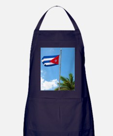 Cuban flag and statue in center of to Apron (dark)