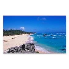 Caribbean, Bermuda. Warwick Lo Decal