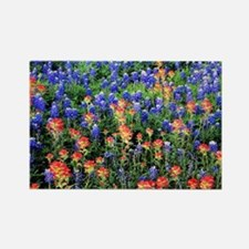BLUEBONNETS AND PAINTBRUSH 1 Rectangle Magnet