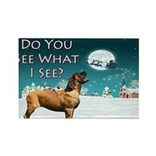 do-you-see-greetingcard Rectangle Magnet