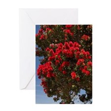Pohutukawa tree and beach, Paihia, B Greeting Card
