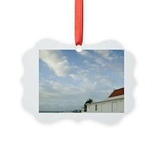 ABC Islands, BONAIRE, Pink Beach: Ornament