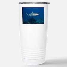 Caribbean Reef Sharks (Carcharh Travel Mug