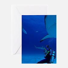 Caribbean, Bahamas, Diver Photograph Greeting Card