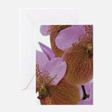Caribbean, Barbados Orchid World, St Greeting Card