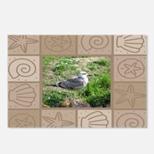 Seagull6 Postcards (Package of 8)