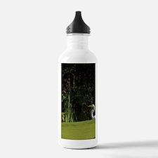 White Egret on Roco Ki Water Bottle