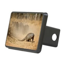 Banded Mongoose4-1 Hitch Cover