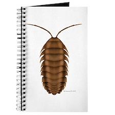 Isopod Journal