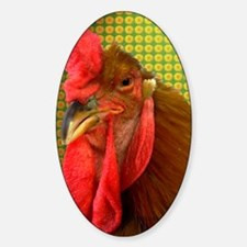 Important rooster Sticker (Oval)