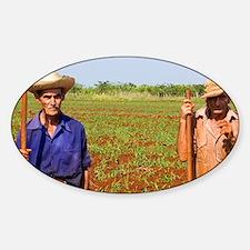 Simple farmers portait working fiel Sticker (Oval)
