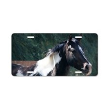 Paint Horse Aluminum License Plate