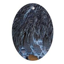 Dominican Republic, Punta Cana Regio Oval Ornament