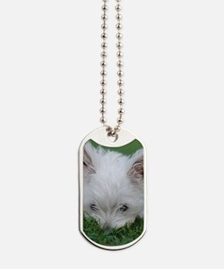 West Highland Terrier puppy on grass hidi Dog Tags