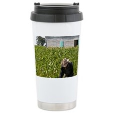 Tobacco farmer picking tobacco  Travel Mug