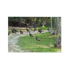 Wild turkeys Rectangle Magnet