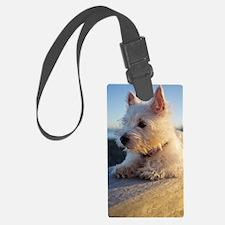 West Highland Terrier puppy on w Luggage Tag