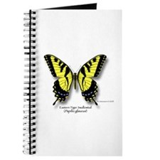 Eastern Tiger Swallowtail Journal