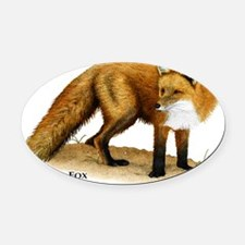 Red Fox Oval Car Magnet