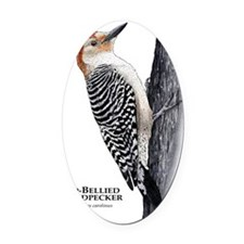 Red-Bellied Woodpecker Oval Car Magnet