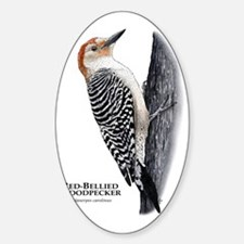 Red-Bellied Woodpecker Decal