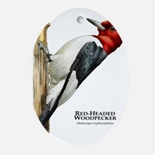 Red-Headed Woodpecker Oval Ornament