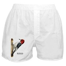 Red-Headed Woodpecker Boxer Shorts